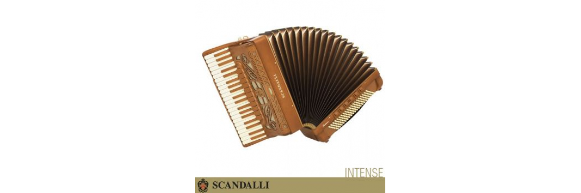 http://www.cordionabarata.com.br/acordeon-scandalli-intense
